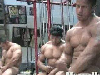 quick shots!-3 bodybuilders timmykobill
