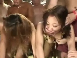 eastern  japanese chicks drilling group fuck