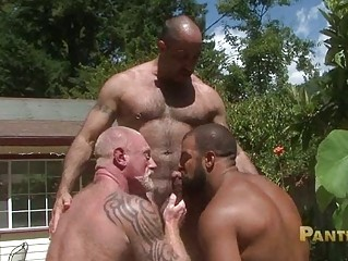 bearded gay bears share single fucking big meat